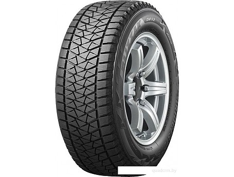 Bridgestone Blizzak DM-V2 255/50R20 109T