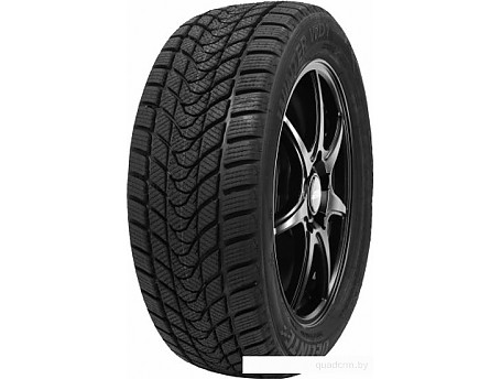 Delinte Winter WD1 195/55R15 85H